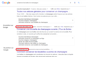 SEO exemple screen google